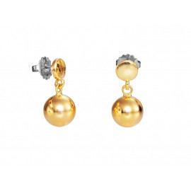VICEROY Gold Plated Earrings